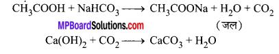 MP Board Class 10th Science Solutions Chapter 4 कार्बन एवं इसके यौगिक 57