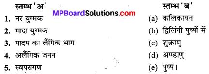 MP Board Class 10th Science Solutions Chapter 8 जीव जनन कैसे करते है 3