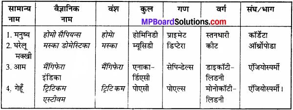 11th Class Accounts Book Mp Board