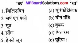 MP Board Class 11th Biology Solutions Chapter 19 उत्सर्जी उत्पाद एवं उनका निष्कासन - 1