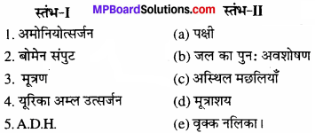 MP Board Class 11th Biology Solutions Chapter 19 उत्सर्जी उत्पाद एवं उनका निष्कासन - 3