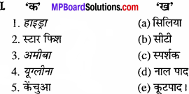 MP Board Class 11th Biology Solutions Chapter 20 गमन एवं संचलन - 3