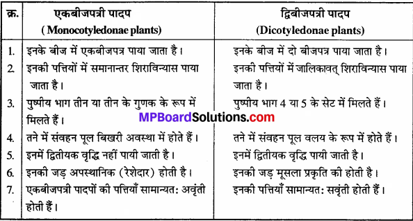 वनस्पति जगत के प्रश्न उत्तर MP Board Class 11th Chapter 3