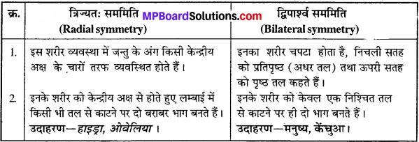 MP Board Class 11th Biology Solutions Chapter 4 प्राणि जगत - 5