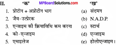 MP Board Class 11th Biology Solutions Chapter 9 जैव अणु - 26