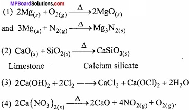 MP Board Class 11th Chemistry Important Questions Chapter 10 s - Block Elements abc