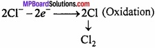MP Board Class 11th Chemistry Important Questions Chapter 10 s - Block Elements img 15