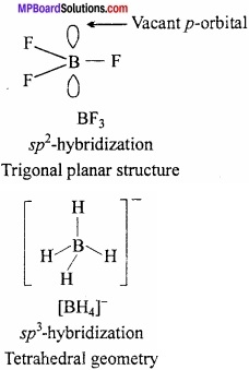MP Board Class 11th Chemistry Important Questions Chapter 11 p - Block Elements img 10