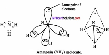 MP Board Class 11th Chemistry Important Questions Chapter 4 Chemical Bonding and Molecular Structure img 25