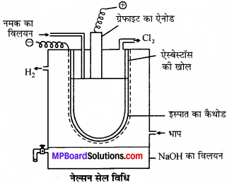 MP Board Class 11th Chemistry Solutions Chapter 10 s-ब्लॉक तत्त्व - 38