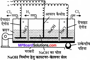 MP Board Class 11th Chemistry Solutions Chapter 10 s-ब्लॉक तत्त्व - 46