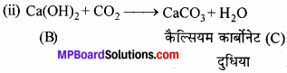 MP Board Class 11th Chemistry Solutions Chapter 10 s-ब्लॉक तत्त्व - 48