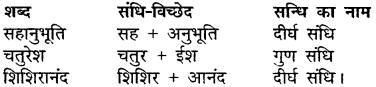 MP Board Class 11th Hindi Makrand Solutions Chapter 19 अथ काटना कुत्ते का भइया जी को img-3