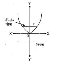 MP Board Class 11th Maths Solutions Chapter 11 शंकु परिच्छेद Ex 11.2 img-2