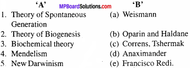 MP Board Class 12th Biology Important Questions Chapter 7 Evolution