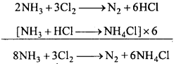 MP Board Class 12th Chemistry Important Questions Chapter 7 The p-Block Elements 11