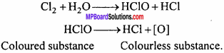 MP Board Class 12th Chemistry Important Questions Chapter 7 The p-Block Elements 13