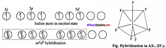 MP Board Class 12th Chemistry Important Questions Chapter 7 The p-Block Elements 18