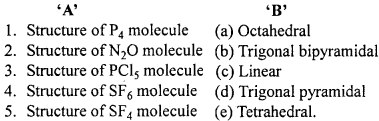 MP Board Class 12th Chemistry Important Questions Chapter 7 The p-Block Elements 2