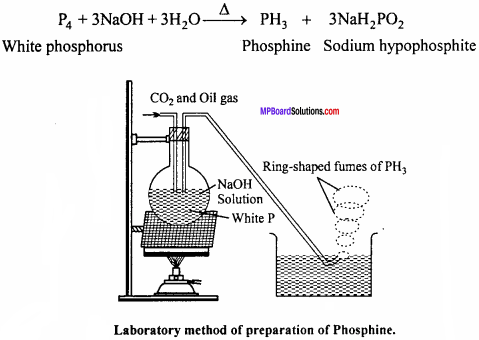 MP Board Class 12th Chemistry Important Questions Chapter 7 The p-Block Elements 24