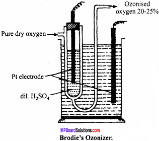 MP Board Class 12th Chemistry Important Questions Chapter 7 The p-Block Elements 25