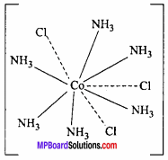 MP Board Class 12th Chemistry Important Questions Chapter 9 Coordination Compounds 18