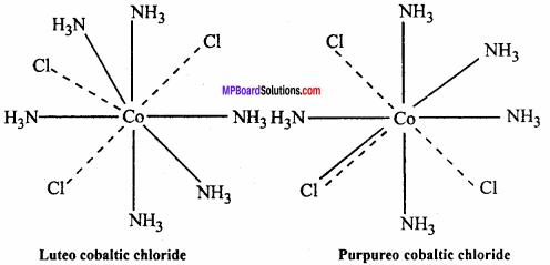 MP Board Class 12th Chemistry Important Questions Chapter 9 Coordination Compounds 19