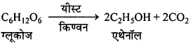 MP Board Class 12th Chemistry Solutions Chapter 11 ऐल्कोहॉल, फीनॉल तथा ईथर - 102
