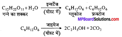 MP Board Class 12th Chemistry Solutions Chapter 11 ऐल्कोहॉल, फीनॉल तथा ईथर - 123