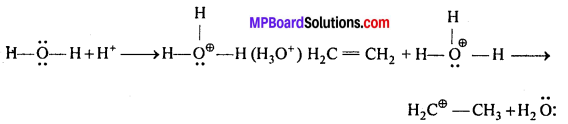 MP Board Class 12th Chemistry Solutions Chapter 11 ऐल्कोहॉल, फीनॉल तथा ईथर - 36
