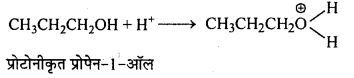 MP Board Class 12th Chemistry Solutions Chapter 11 ऐल्कोहॉल, फीनॉल तथा ईथर - 65