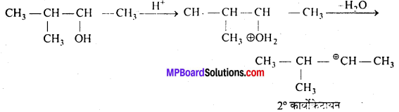 MP Board Class 12th Chemistry Solutions Chapter 11 ऐल्कोहॉल, फीनॉल तथा ईथर - 85