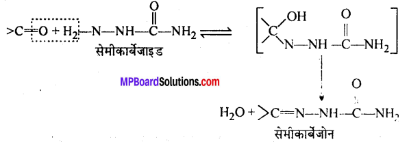 MP Board Class 12th Chemistry Solutions Chapter 12 ऐल्डिहाइड्स, कीटोन्स तथा कार्बोक्सिलिक अम्ल - 16