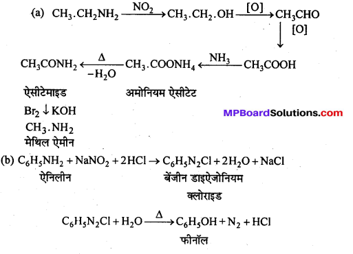 MP Board Class 12th Chemistry Solutions Chapter 13 ऐमीन - 101