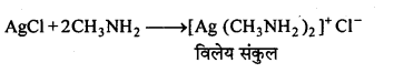 MP Board Class 12th Chemistry Solutions Chapter 13 ऐमीन - 105