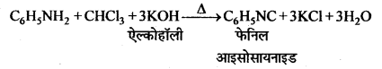 MP Board Class 12th Chemistry Solutions Chapter 13 ऐमीन - 112