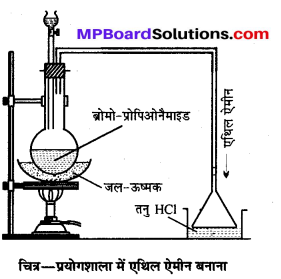 MP Board Class 12th Chemistry Solutions Chapter 13 ऐमीन - 120
