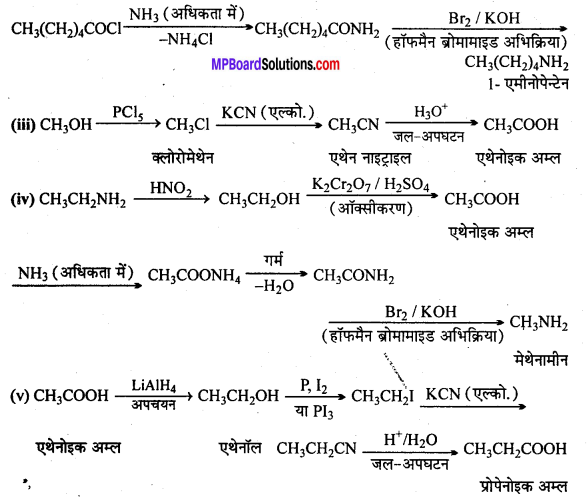 MP Board Class 12th Chemistry Solutions Chapter 13 ऐमीन - 23
