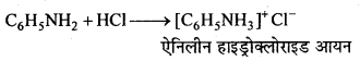 MP Board Class 12th Chemistry Solutions Chapter 13 ऐमीन - 73
