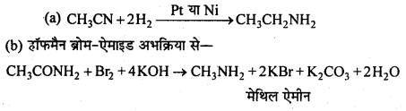 MP Board Class 12th Chemistry Solutions Chapter 13 ऐमीन - 91