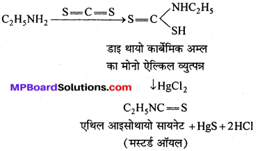 MP Board Class 12th Chemistry Solutions Chapter 13 ऐमीन - 95