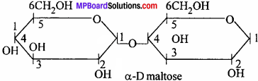 MP Board Class 12th Chemistry Solutions Chapter 14 Biomolecules - 24
