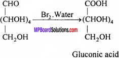 MP Board Class 12th Chemistry Solutions Chapter 14 Biomolecules - 8