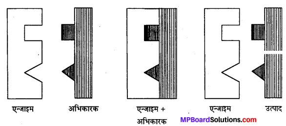 MP Board Class 12th Chemistry Solutions Chapter 5 पृष्ठ रसायन - 10