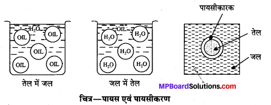 MP Board Class 12th Chemistry Solutions Chapter 5 पृष्ठ रसायन - 13