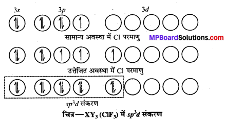 MP Board Class 12th Chemistry Solutions Chapter 7 p-ब्लॉक के तत्त्व - 74
