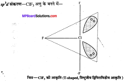 MP Board Class 12th Chemistry Solutions Chapter 7 p-ब्लॉक के तत्त्व - 75