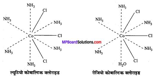 MP Board Class 12th Chemistry Solutions Chapter 9 उपसहसंयोजन यौगिक - 12
