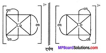 MP Board Class 12th Chemistry Solutions Chapter 9 उपसहसंयोजन यौगिक - 2