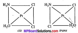 MP Board Class 12th Chemistry Solutions Chapter 9 उपसहसंयोजन यौगिक - 3
